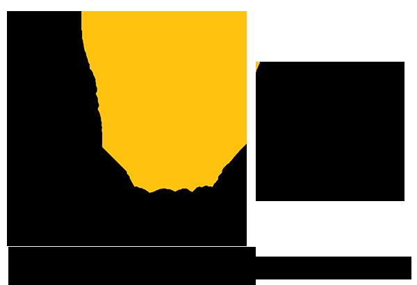 Image result for timisoara 2021 logo